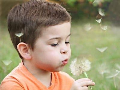Bebeklerde ve Çocuklarda Polen Alerjisi